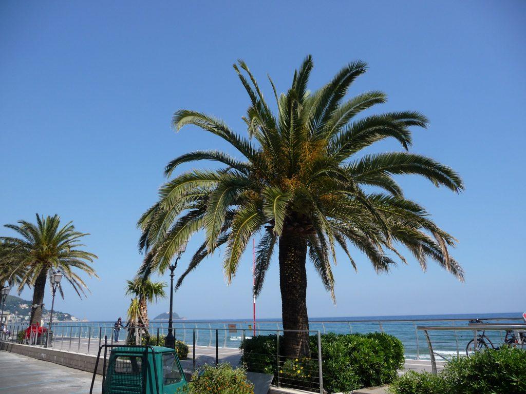 vakantie Alassio, Ligurië, Italië
