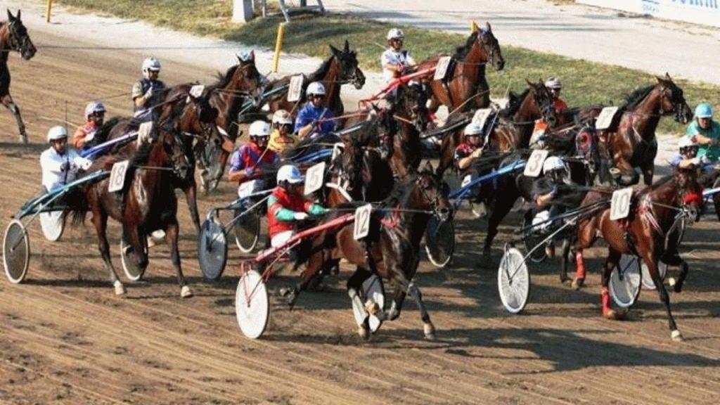 Paardenrenbaan / Paardenraces (Ippodromo dei Fiori) ( Villanova di Albenga)